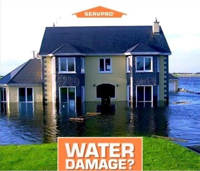 Water Damage Got Water Damage? Here's When and Why You Need a Professional